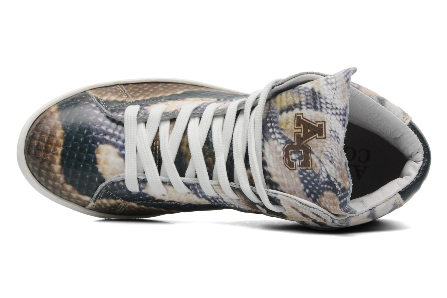 Sneakers American College Animal w Multicolore immagine sinistra