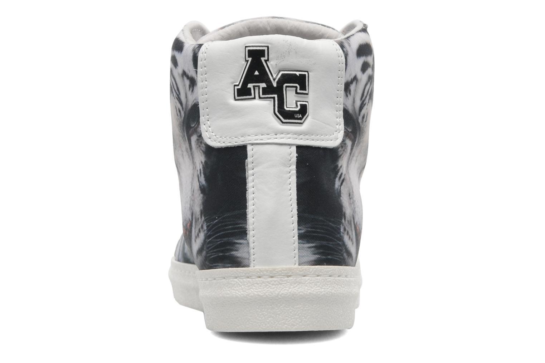 Sneaker American College Animal w mehrfarbig ansicht von rechts