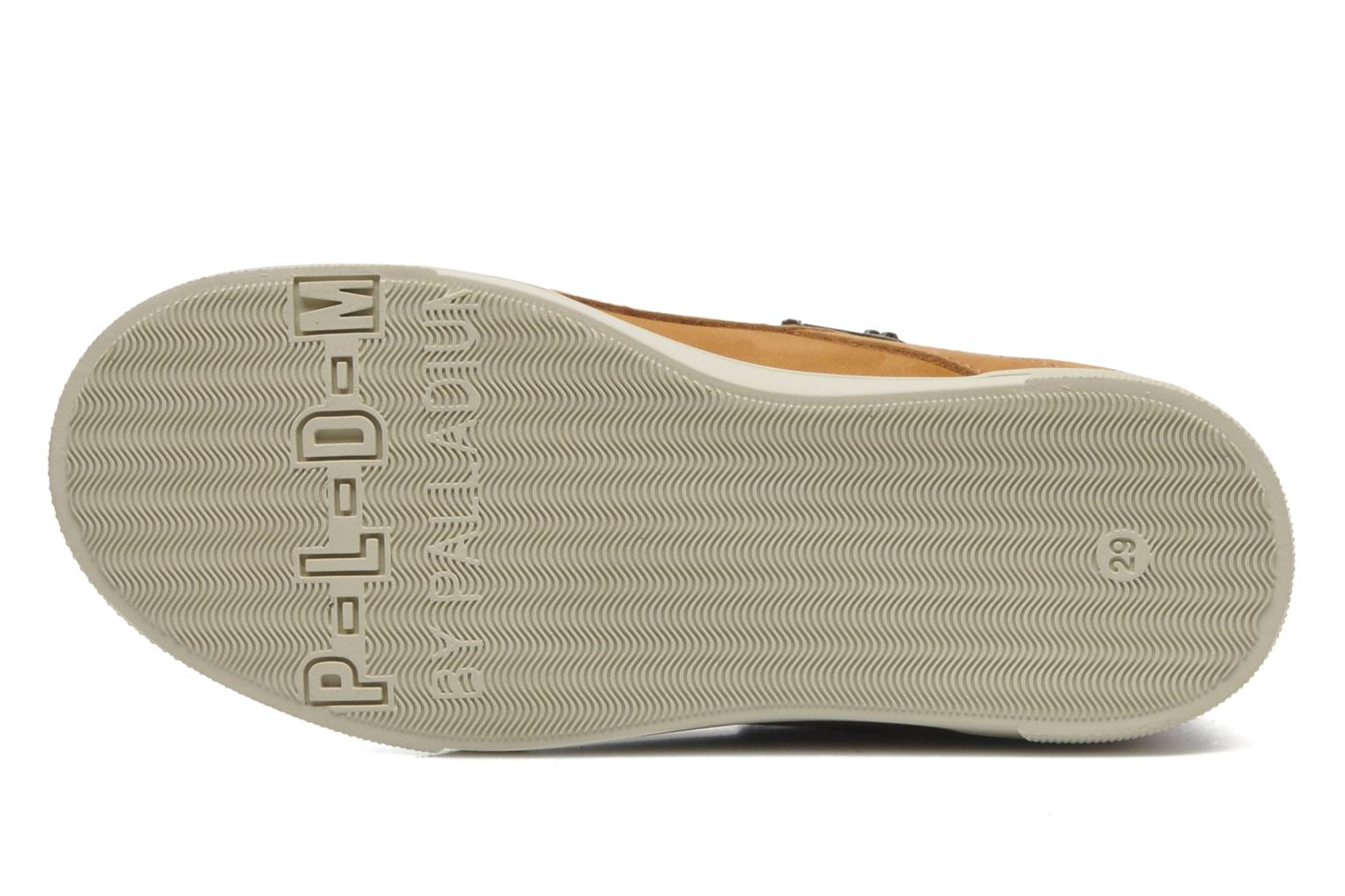Trainers P-L-D-M By Palladium Veleda WP Brown view from above