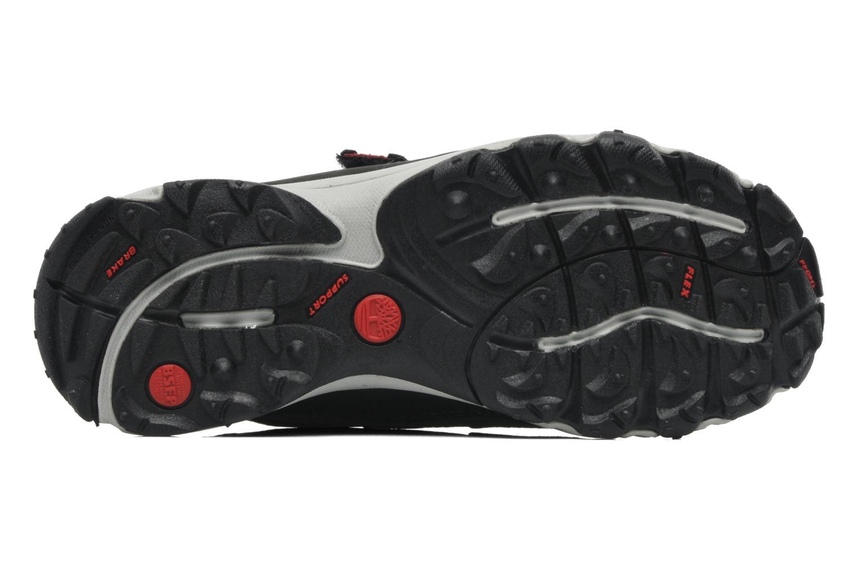 Sneaker Timberland Ossipee H LOXGTX schwarz ansicht von oben