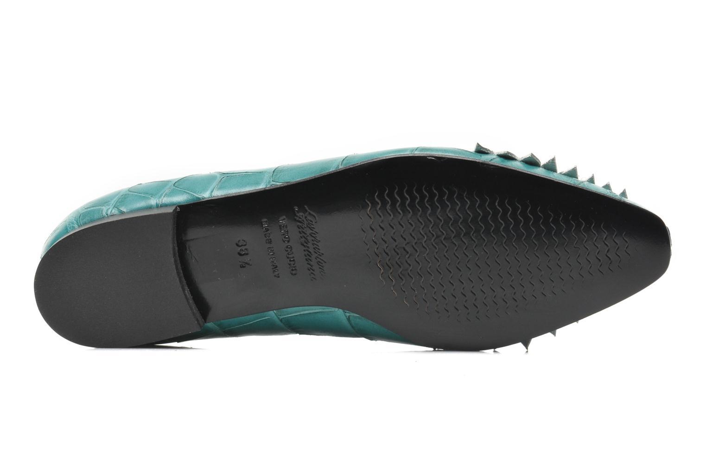 Crocodile Vert