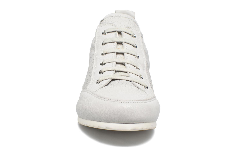 Sneakers Karston Cacao Grijs model