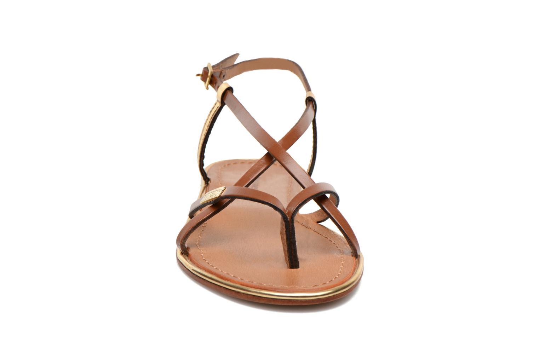 Sandales et nu-pieds Les Tropéziennes par M Belarbi Monaco Marron vue portées chaussures
