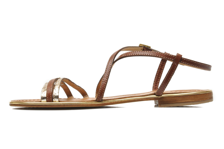 Sandals Les Tropéziennes par M Belarbi Balise Brown front view
