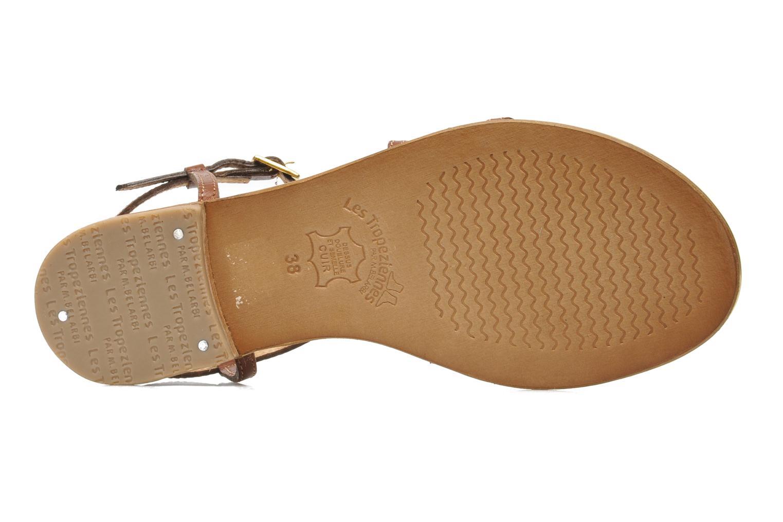 Grandes descuentos últimos zapatos Les Tropéziennes par M Belarbi Balise (Marrón) - Sandalias Descuento
