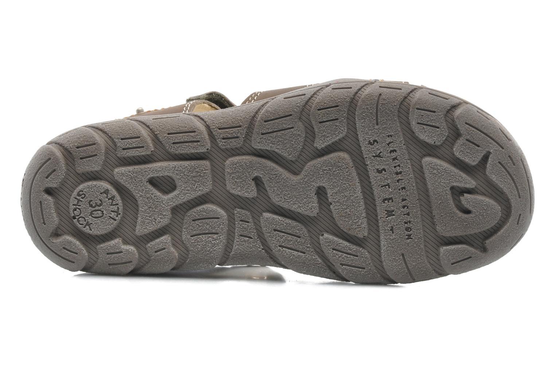 Sandali e scarpe aperte Primigi LAKERS-E Marrone immagine dall'alto