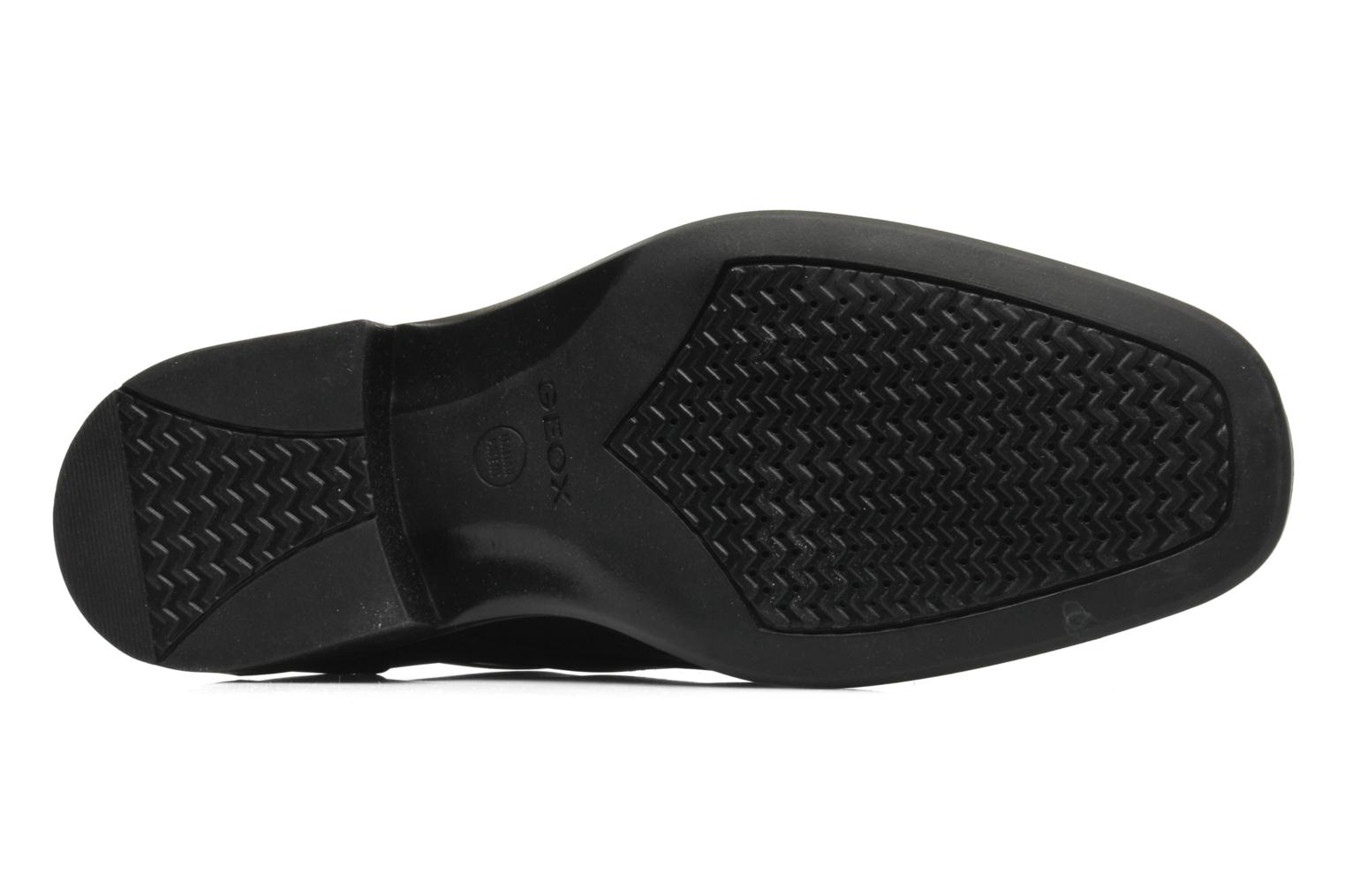 Lace-up shoes Geox U FEDERICO V U2257V Black view from above