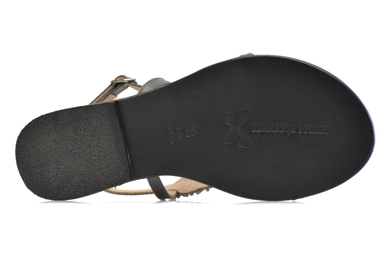 Sandales et nu-pieds Elizabeth Stuart Finco 688 Gris vue haut