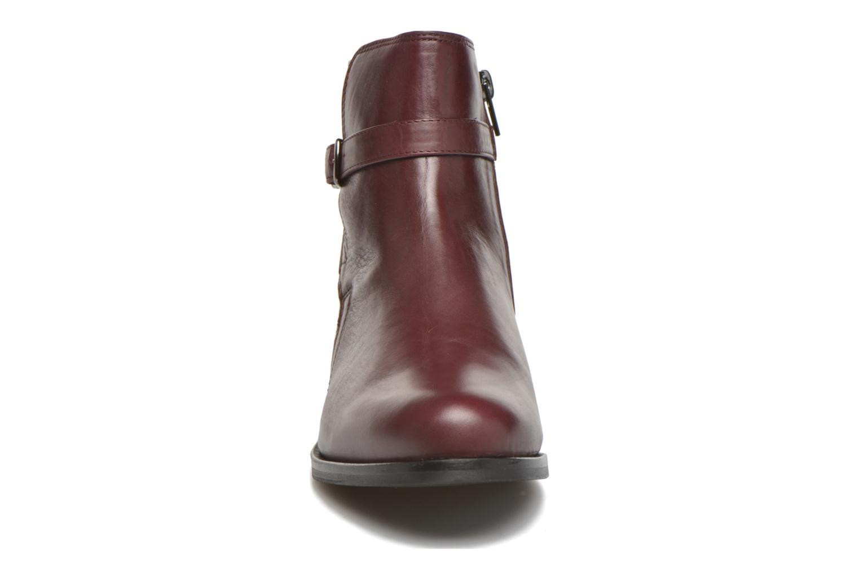 Bottines et boots PintoDiBlu Botania Bordeaux vue portées chaussures