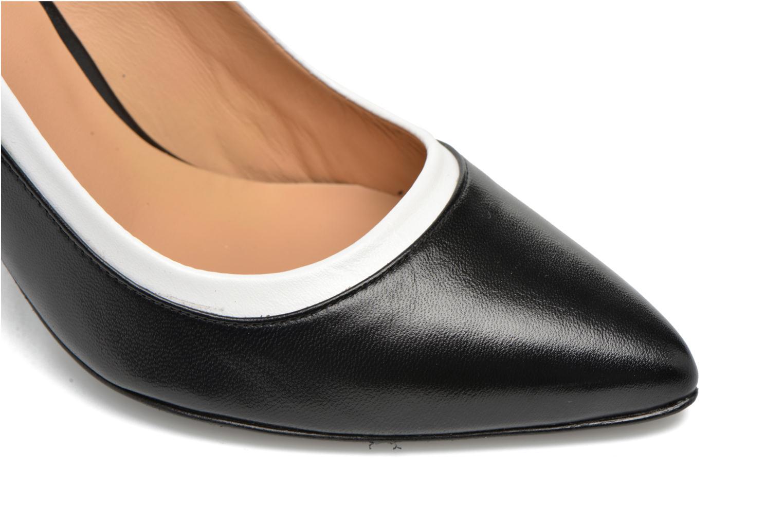 Notting Heels #1 Mestizo negro + England marino + mestizo baltico
