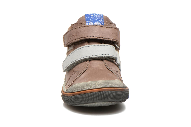 Chaussures à scratch Aster DRUPSTER Beige vue portées chaussures