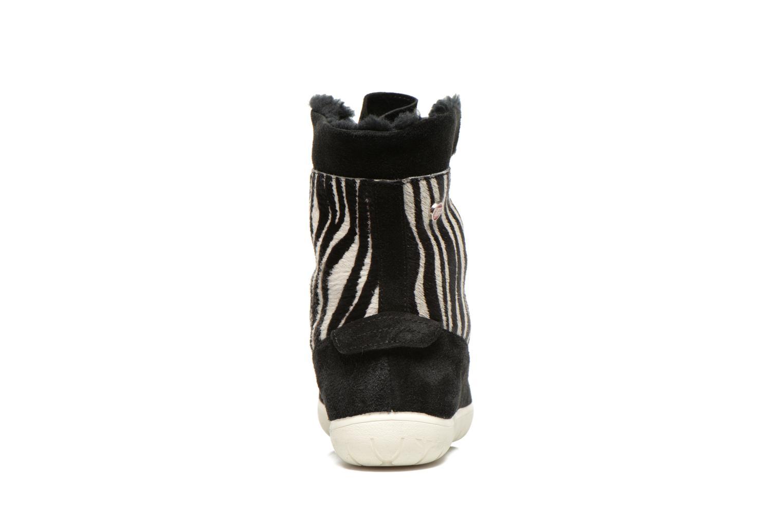Murren animal Zebra 01