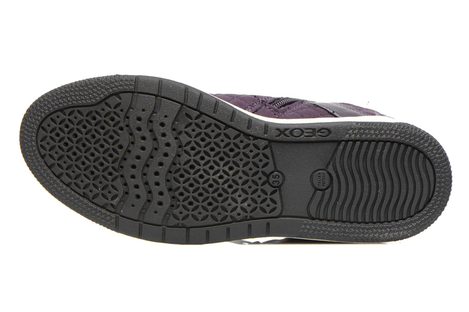Trainers Geox J Creamy G Purple view from above