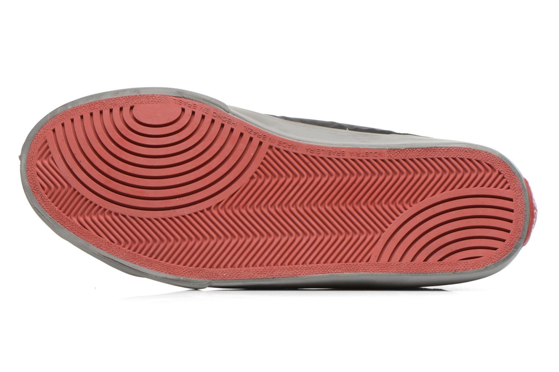 Baskets Coca-cola shoes Darma Nylon Noir vue haut