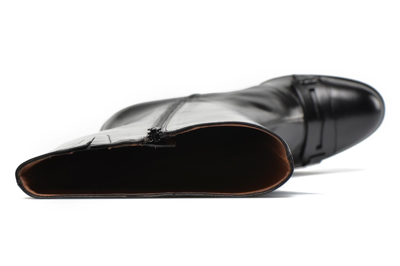 Honey Chile Rodepe noir 02