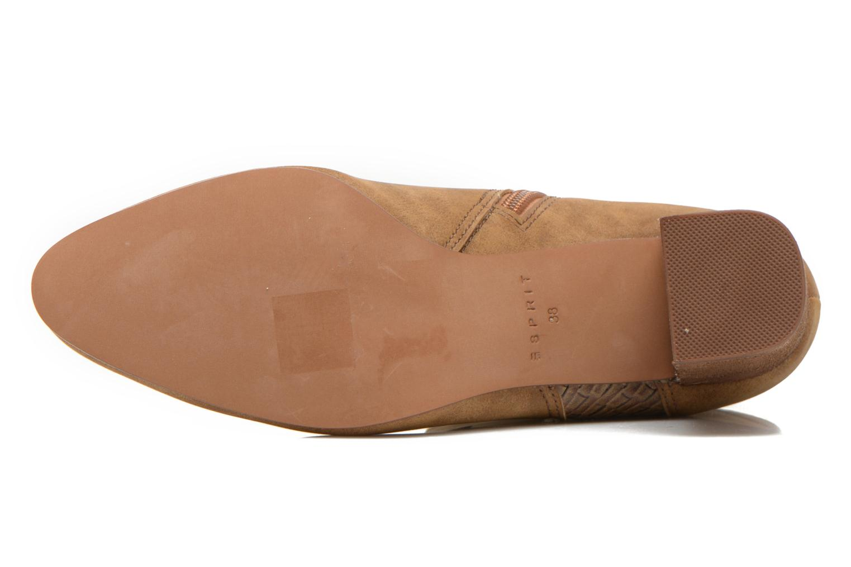 Bottines et boots Esprit Flora Bootie Marron vue haut