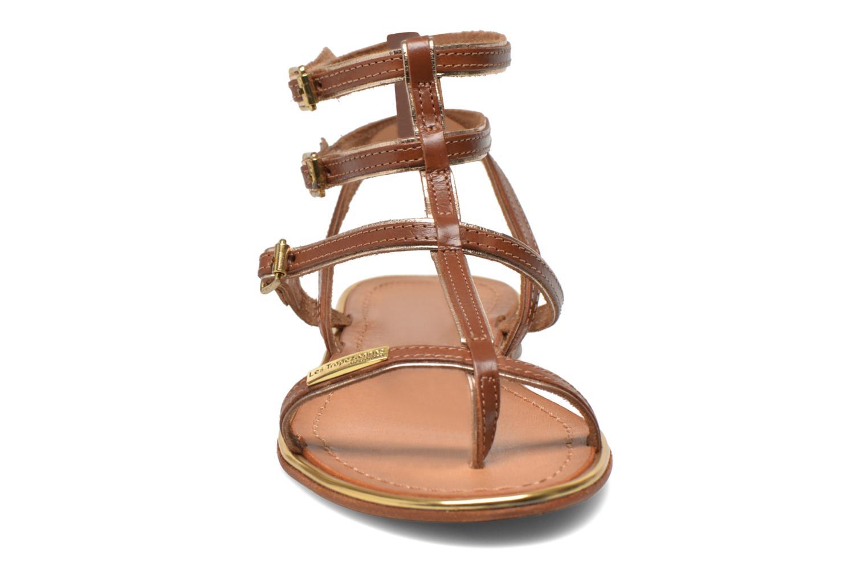 Sandales et nu-pieds Les Tropéziennes par M Belarbi Bristol Marron vue portées chaussures