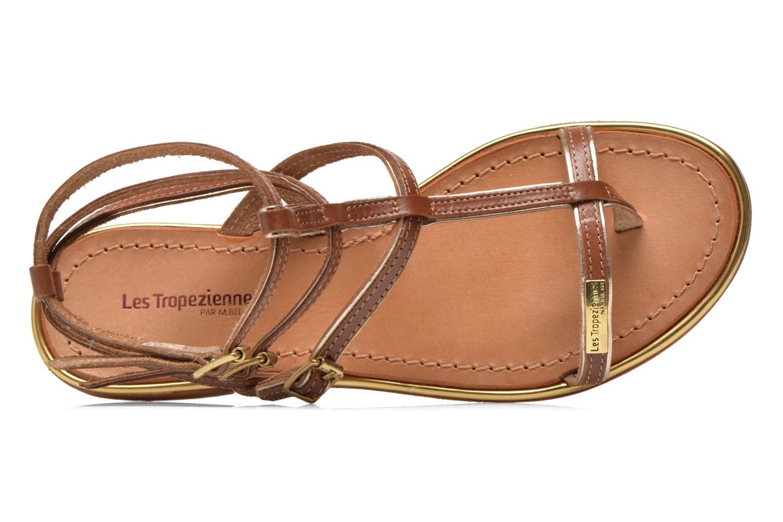 Sandales et nu-pieds Les Tropéziennes par M Belarbi Bristol Marron vue gauche