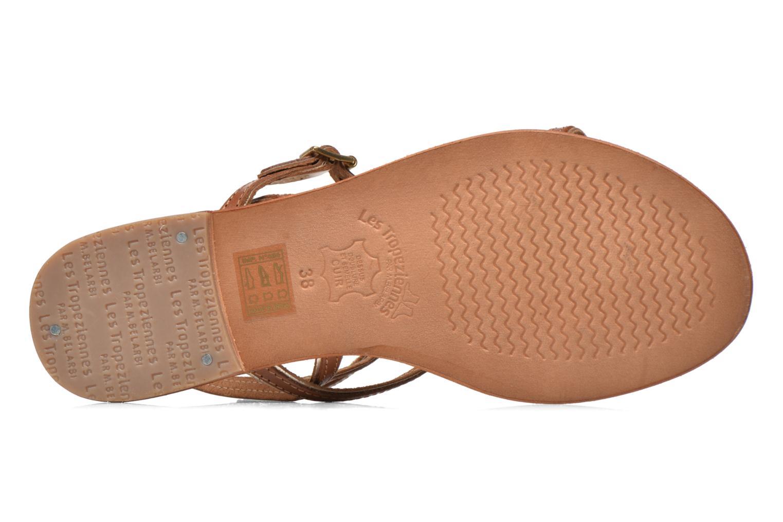 Sandales et nu-pieds Les Tropéziennes par M Belarbi Bristol Marron vue haut