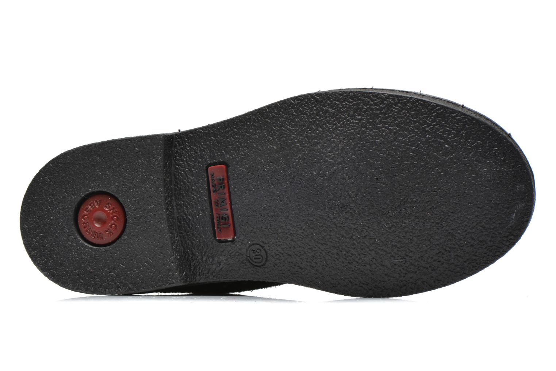 Zapatos con cordones Primigi Timka Negro vista de arriba