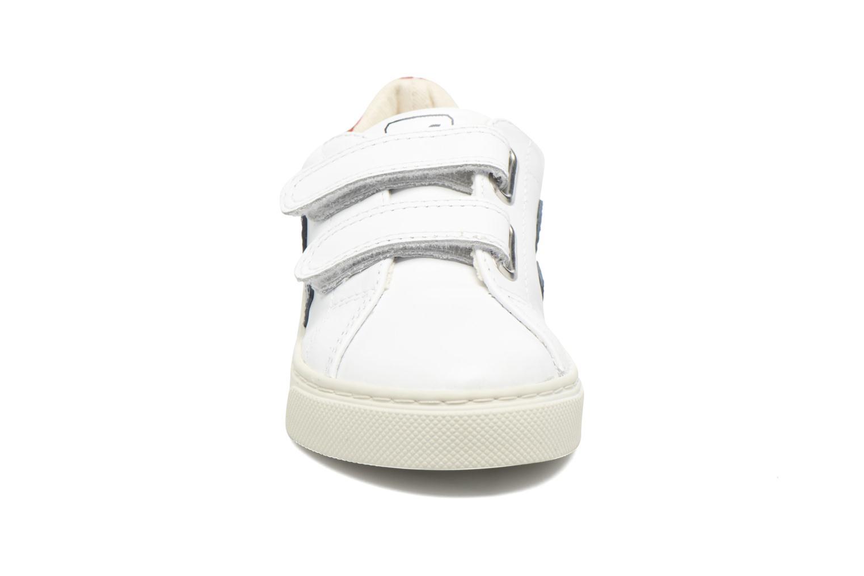 Esplar Small Velcro Extra White Nautico Pekin Pierre