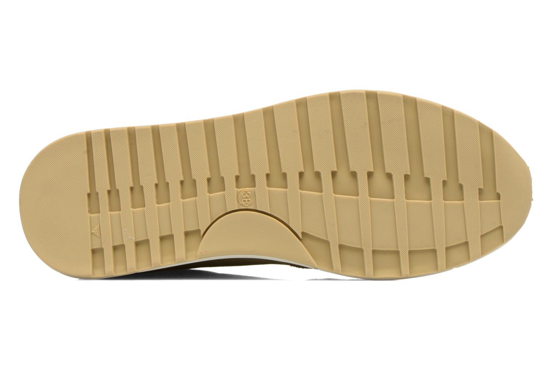 Sneaker Kickers Nielo F beige ansicht von oben