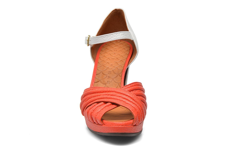 Sandals Chie Mihara Nana Multicolor model view