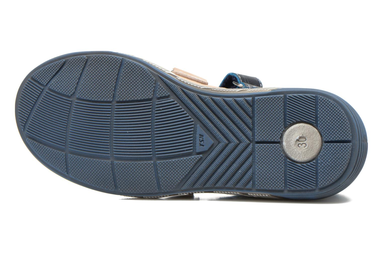 Chicoree Bleu Beige