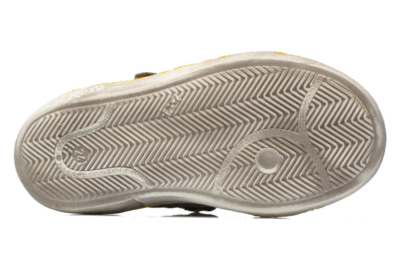Sneakers Kickers Lyvio Verde immagine dall'alto