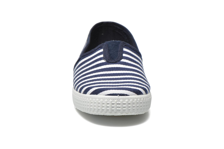 Darwino Bleu-09577