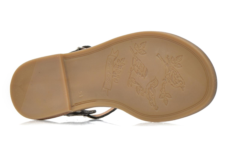 Sandales et nu-pieds Pom d Api Nikky Sandal Eyeliner Noir vue haut
