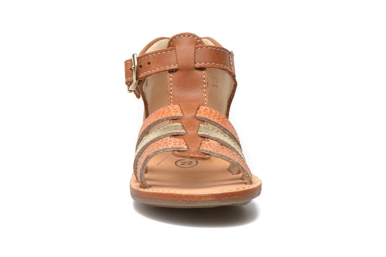 Sandales et nu-pieds Minibel Keglae Marron vue portées chaussures