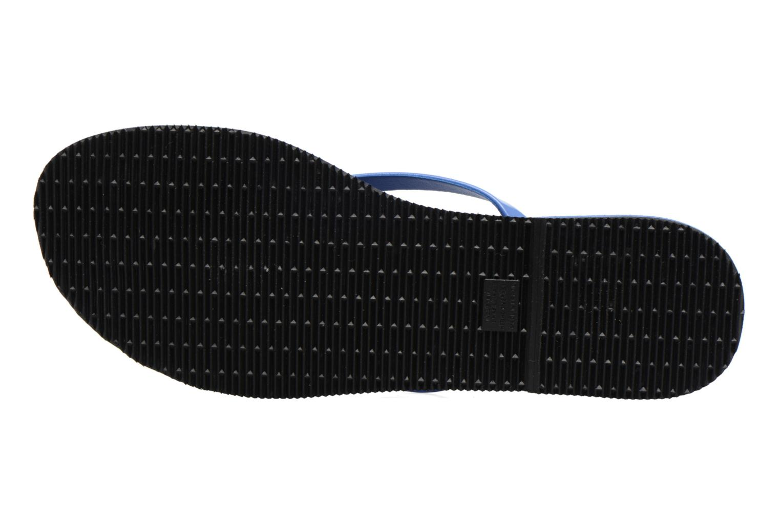 Flip flops Havaianas You Metallic Blue view from above