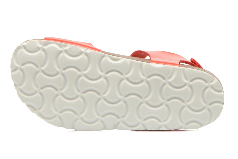 Sandales et nu-pieds Les Tropéziennes par M Belarbi Prune Rose vue haut