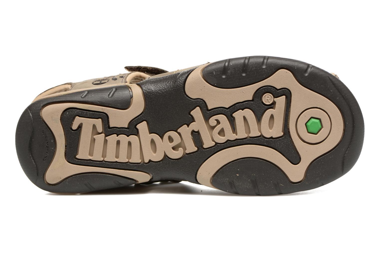 Sandali e scarpe aperte Timberland Oak Bluffs Leather Fisher Grigio immagine dall'alto