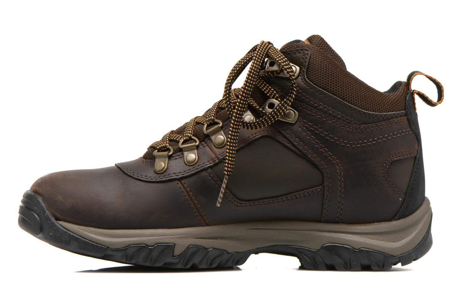 Chaussures à lacets Timberland Mt Monroe Mid WP Marron vue face