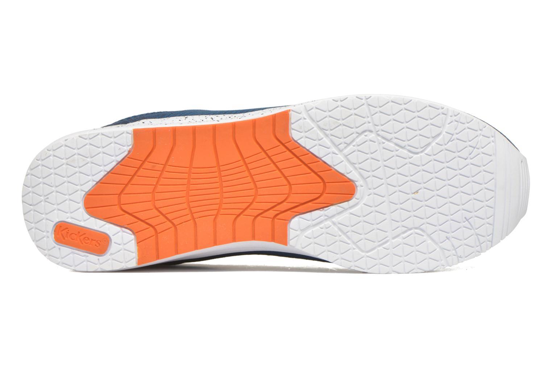 Sneaker Kickers Knitwear blau ansicht von oben