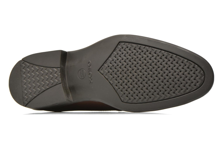 Chaussures à lacets Geox U CARNABY G U64W1G Marron vue haut