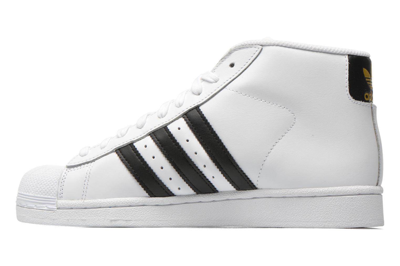 Baskets Adidas Originals Pro Model Blanc vue face