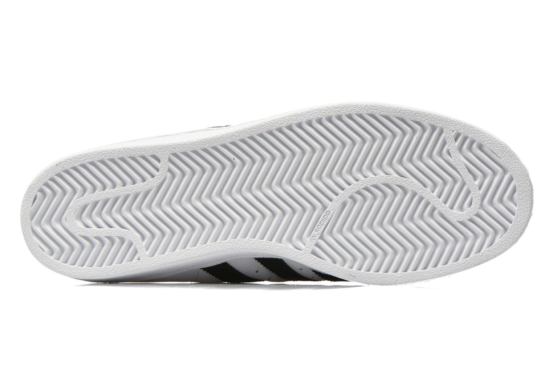 Baskets Adidas Originals Pro Model Blanc vue haut