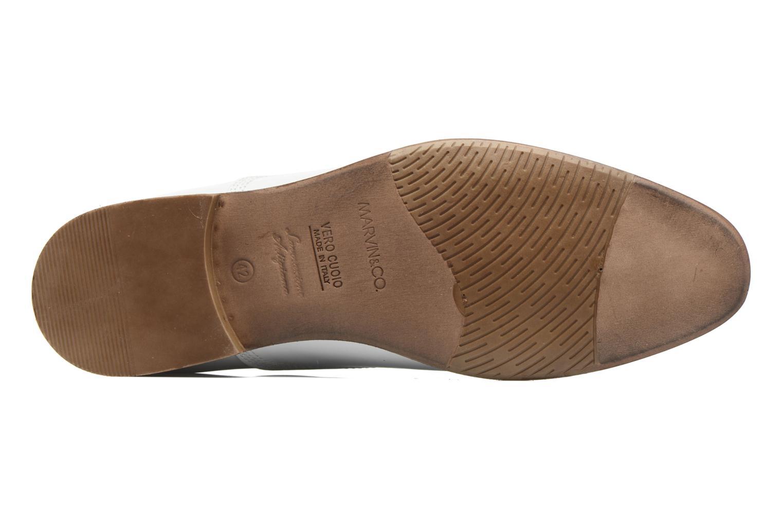 Chaussures à lacets Marvin&Co Newry Blanc vue haut