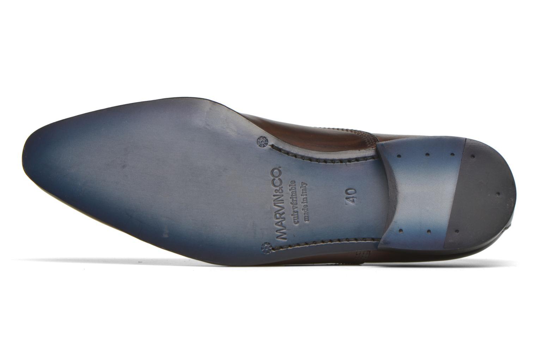 Scarpe con lacci Marvin&Co Norwich Marrone immagine dall'alto
