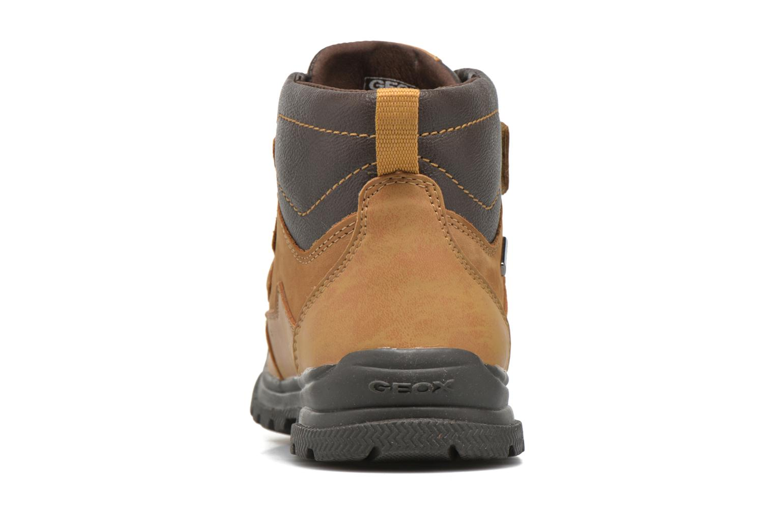 Ankle boots Geox J William B Abx A J6431A Beige view from the right