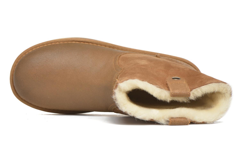 Haydee Chestnut