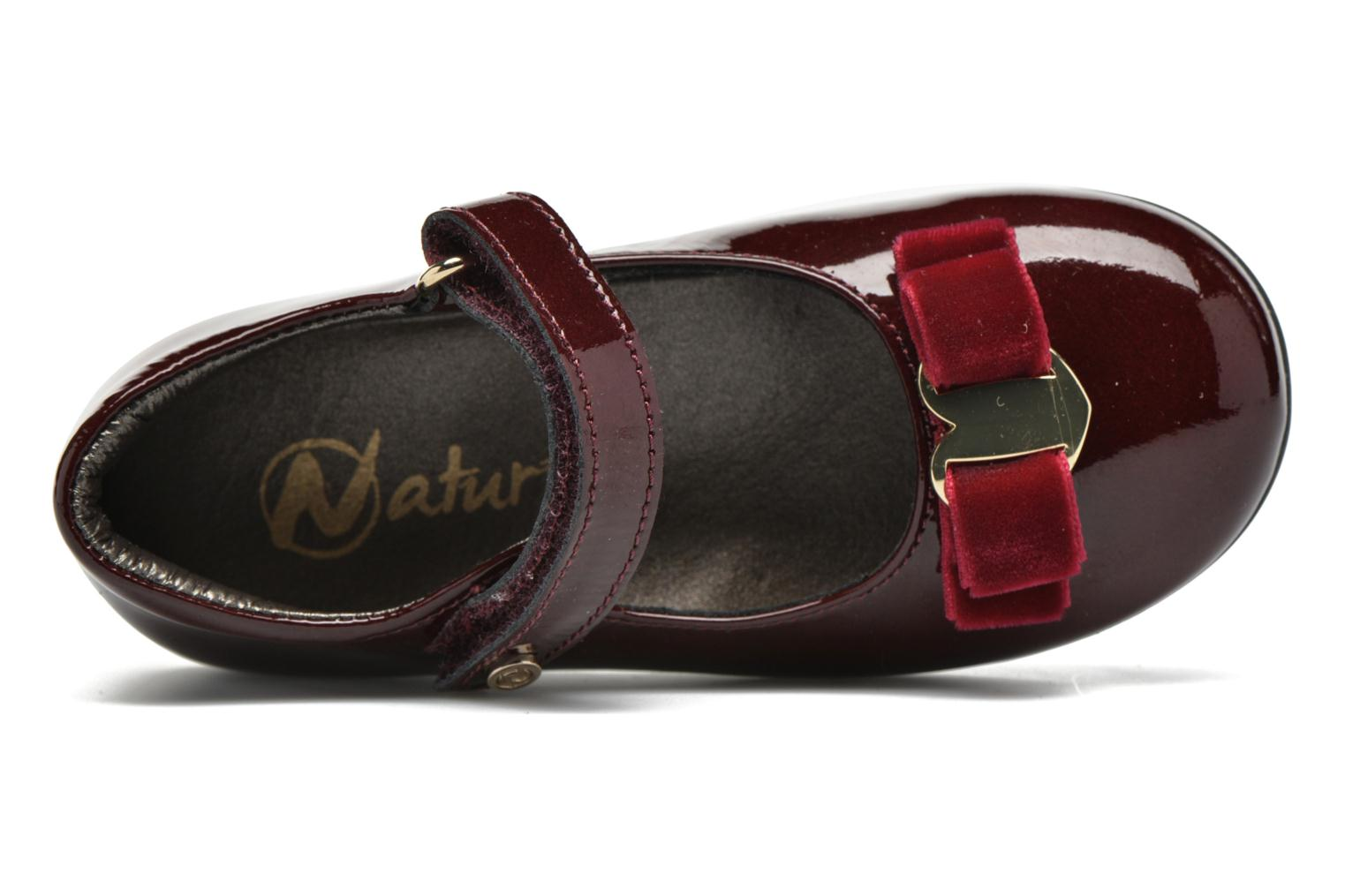 Ballet pumps Naturino Naturino 4891 Burgundy view from the left