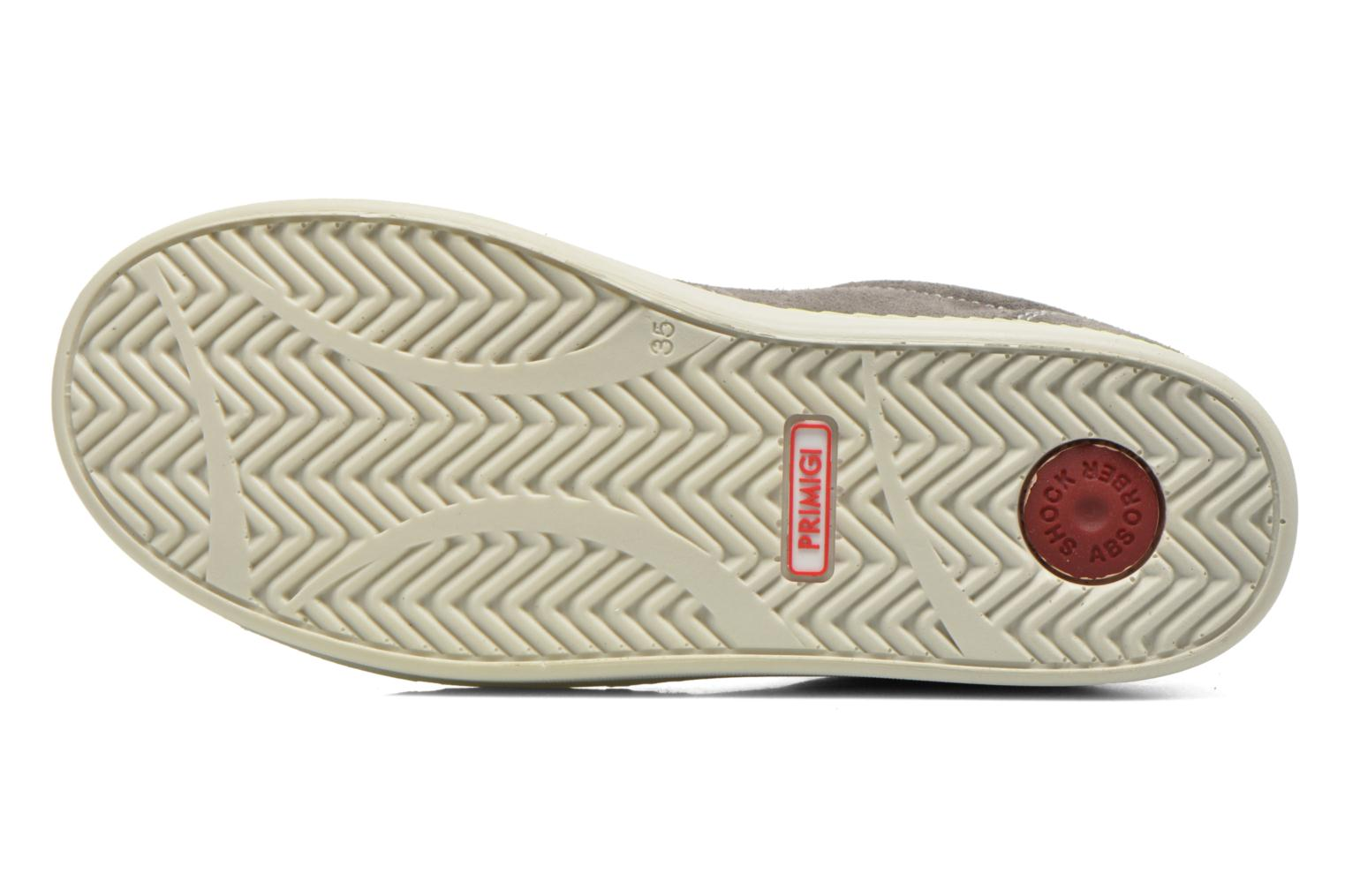 Trainers Primigi Alienor Grey view from above