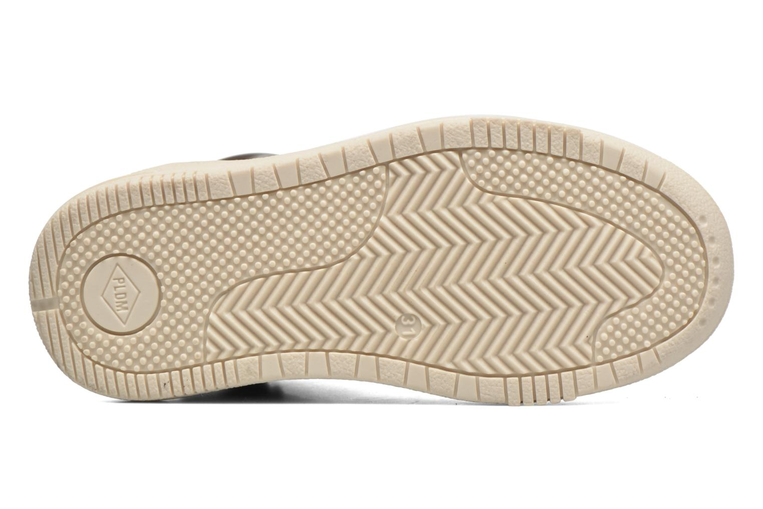 Trainers P-L-D-M By Palladium Galax Brown view from above
