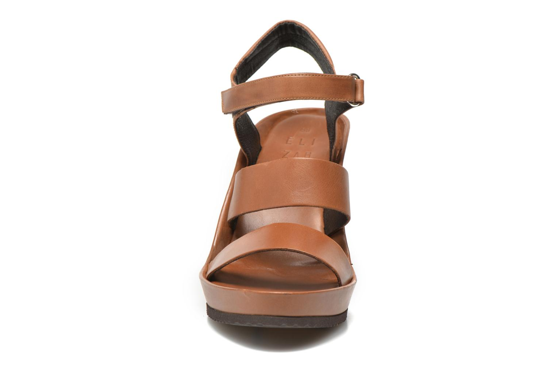 Sandals Elizabeth Stuart Butty 304 Brown model view