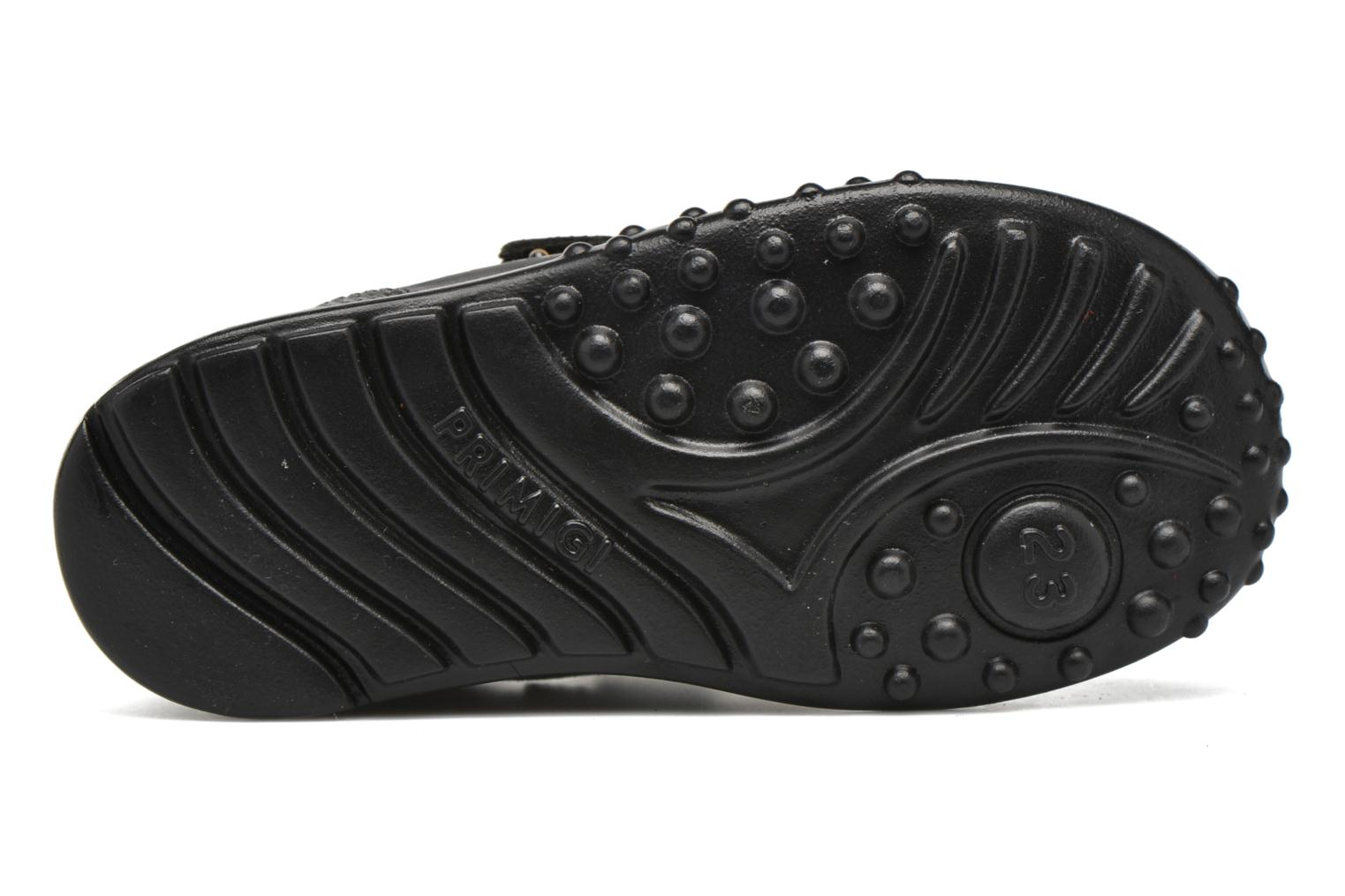 Trainers Primigi Car Black view from above