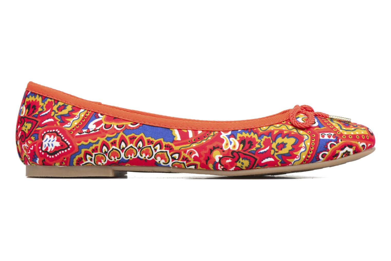 Dahlia Multicolour